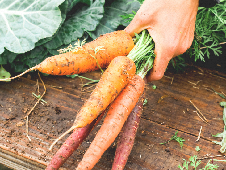 Carrots 101 Nutrition Facts And Health Benefits