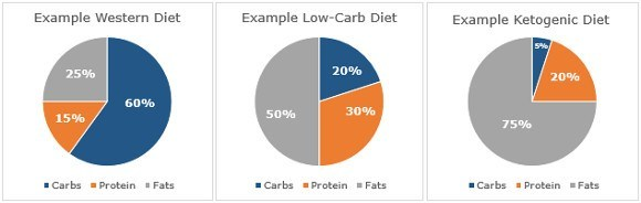 keto or low fat diet lifting