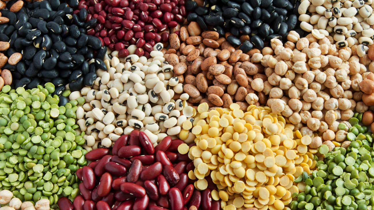 what does the fiber in diet pills do