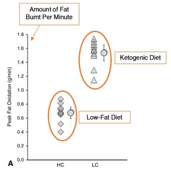 How much fat loss on ketogenic diet