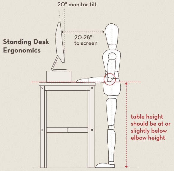 Standing Desk Ergonomics Image Good Looking