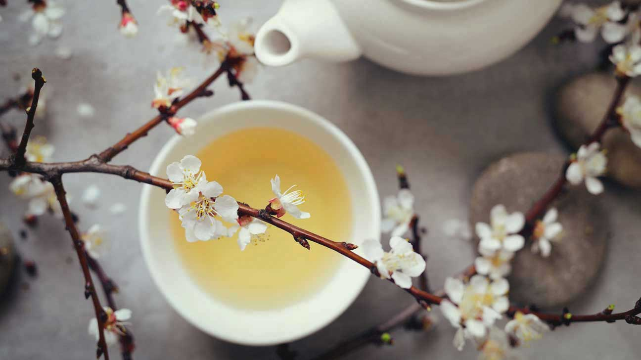10 Impressive Benefits of White Tea  Health Benefits of White Tea white tea in cup 1296x728