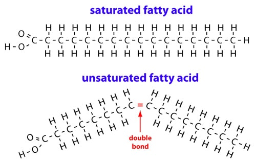 Saturated Fat Good Or Bad