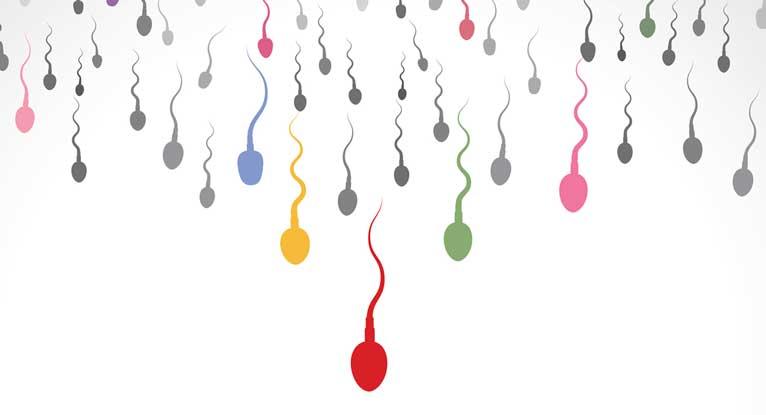 The 7 Step Checklist To Healthy Fertile Sperm