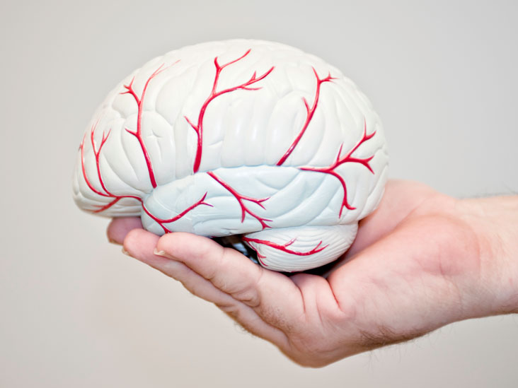 Neurologist: Definition, Treatments, Areas, and More