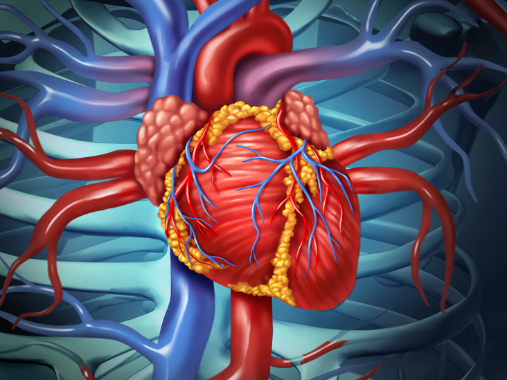 The History of Heart Disease: From Egyptian Mummies to the