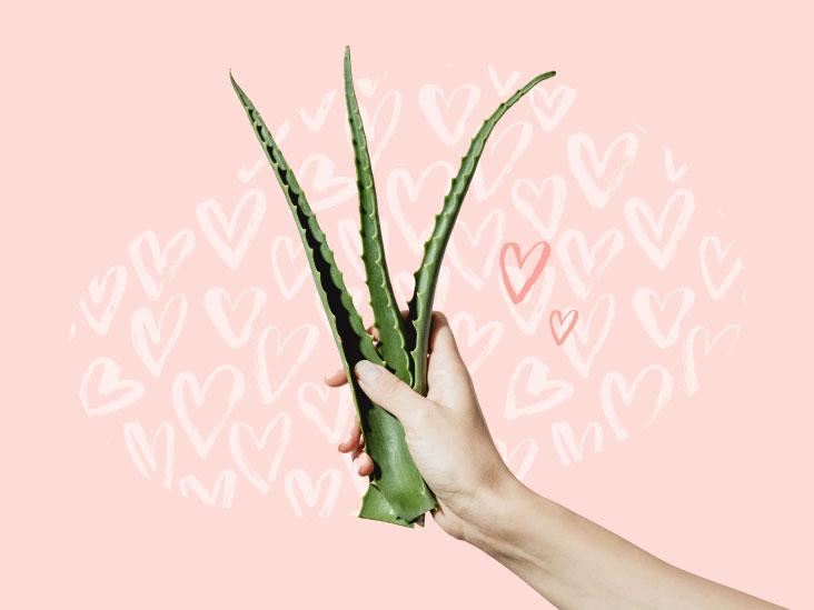 Image result for aloe vera healthline