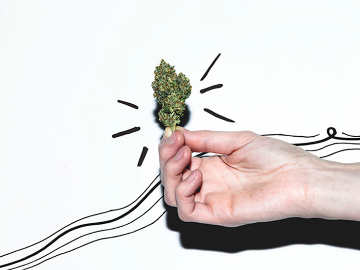 Sativa vs  Indica vs  Hybrid: Chart, Different Use, Side Effects, More