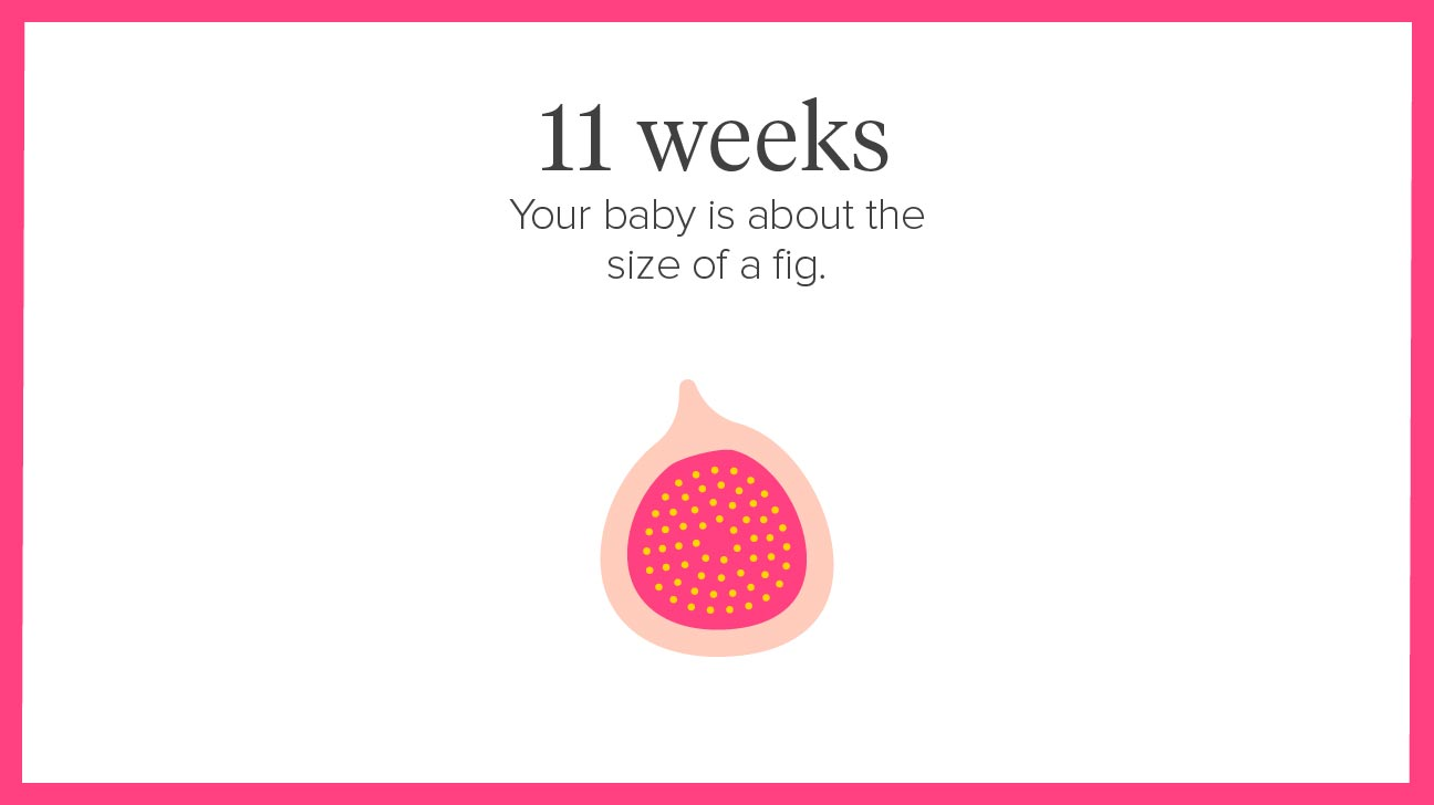 11 Weeks Pregnant Symptoms Tips And More