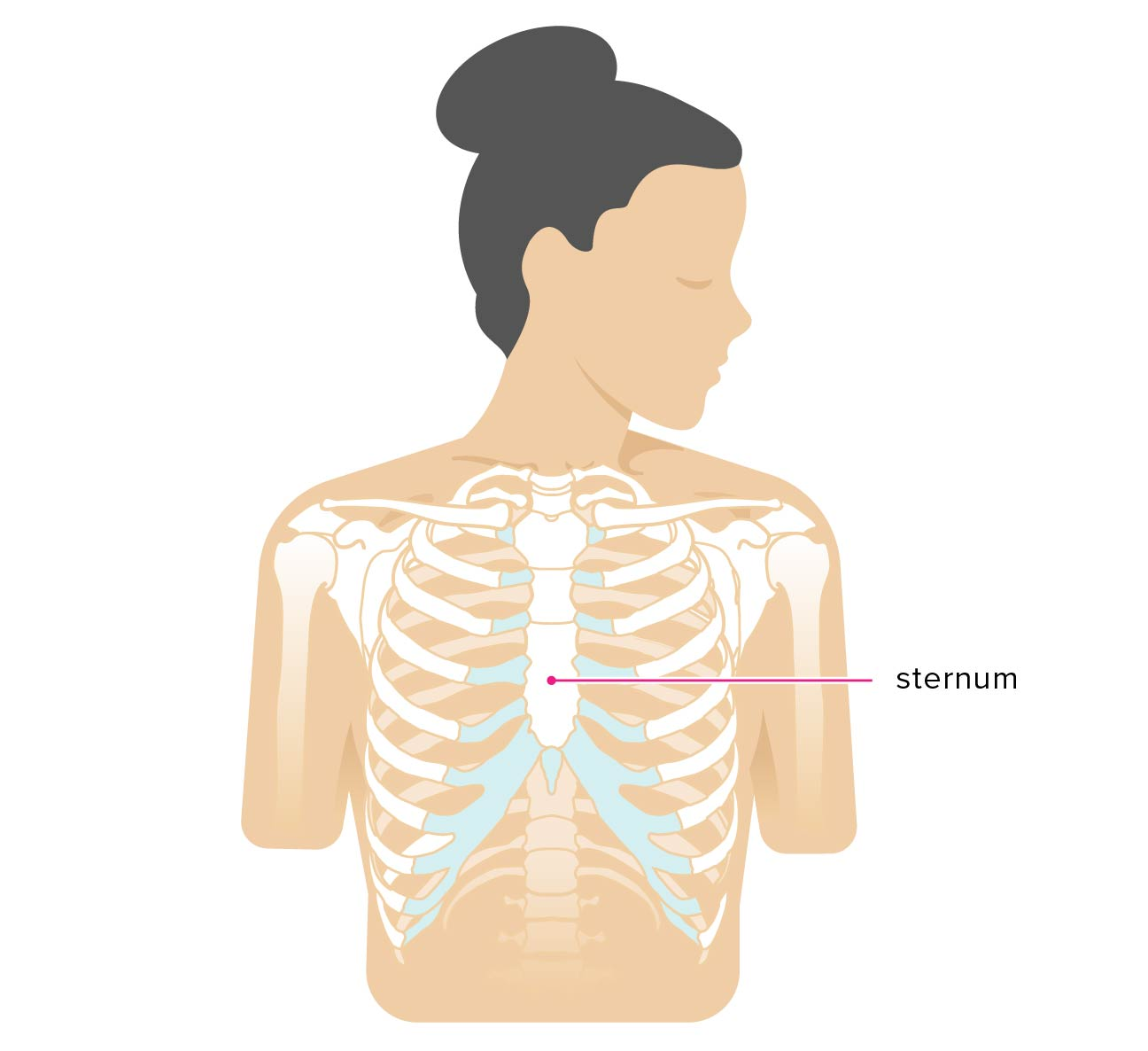 Sternum Popping: Treatment, Pain, Chest Pain, and Symptoms